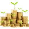 ХАЙП или HUIP -HighYieldInvestmentProgram - Высокодоходная Инвестиционная программа