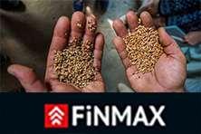 Отзывы о брокере Finmax – отделяем зерна от плевел.