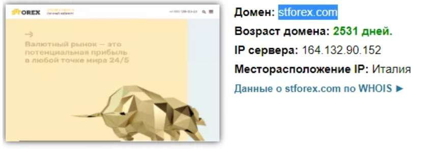 Обзор и реальные отзывы про STforex. Что это? Лохотрон?