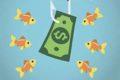 InvestmentBay — стоит ли доверять или есть опасность? Отзывы.