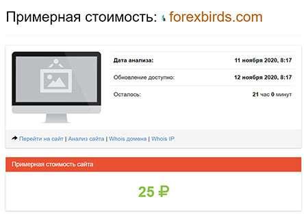 Брокерская контора Forex Birds — стопроцентный лохотрон. Отзывы и обзор.