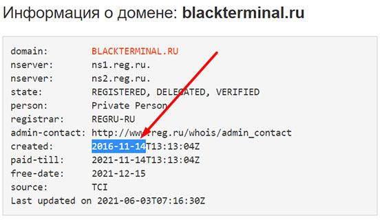 Что представляет из себя компания BlackTerminal? Есть ли опасность?